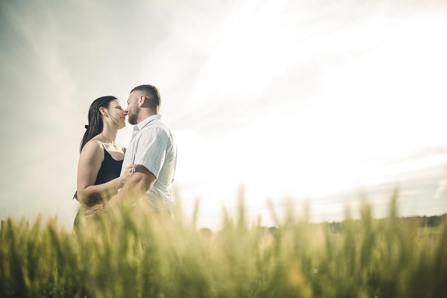 Harvest View Barn Engagement Session  with couple nose kissing in wheat field with bright sunset behind them